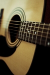 Acoustic Guitar - Fender