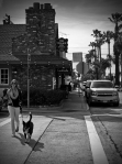 Crossing The Street - Balboa Island