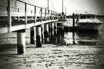 Pier and Boat - Balboa Island